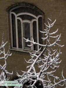 تهران یک روز برفی