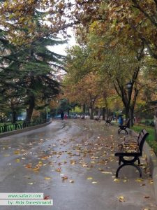 روز بارانی پارک ملت